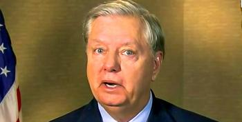 'Help Me': Lindsey Graham Again Begs For Money On Fox News After Poll Shows Him Losing To Dem