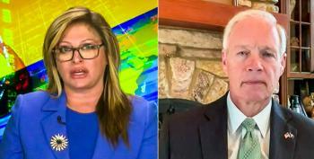 Fox News Host And Senator Ron Johnson Smear Hunter Biden With Baseless Accusations
