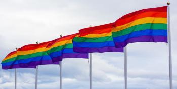 'Rainbow Wave' Of LGBTQ Candidates Ran This Year And WON