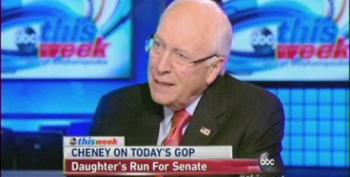 Cheney Stumps For Daughter Liz By Trashing Mike Enzi On This Week