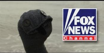 Fox PR Flacks Used Sock Puppets In Blog Comment Sections
