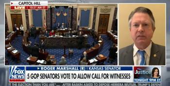 GOP Senator Attacks Pelosi In Response To News Of McCarthy Phone Call