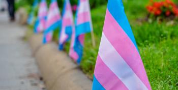 A Guide To Choosing A Trans-Inclusive College
