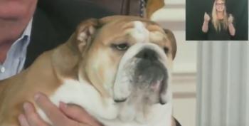 Babydog Wants You To Get Vaccinated 'So Badly'