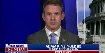 Kinzinger Predicts GOP Terrorist Insurrection Will Impact Midterms