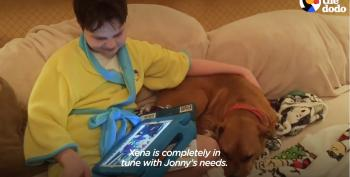 Pitbull Rescues Boy With Autism In More Ways Than One