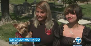 Saved By The Belle: Interview With Teen Who Protected Dogs From Bear