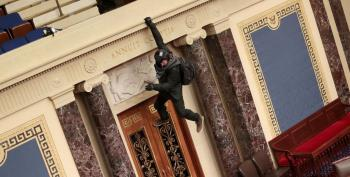 Idaho Man Seen In Viral Photos Pleads Guilty In Capitol Riot