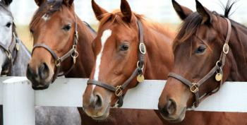 Tennessee Republicans Push 'Horse Paste' Instead Of Vaccine