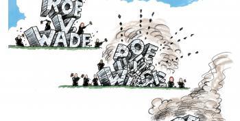 CARTOON: Roe V. Woe