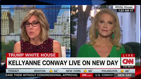 cambridge analytica and wikileaks kellyanne conway who me