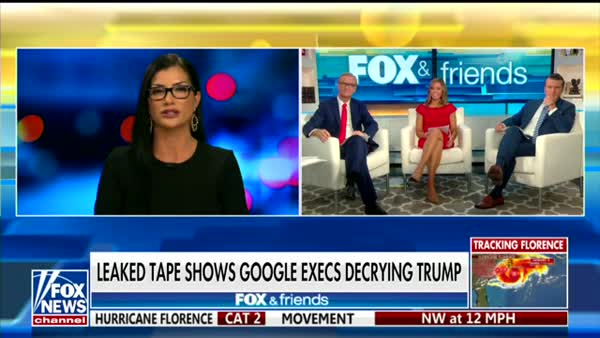 Dana Loesch Can't Imagine Why Dems Want Trump Impeached