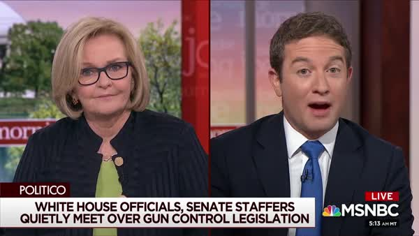 Claire McCaskill On Exactly Why The NRA Is So Important To #MoscowMitch