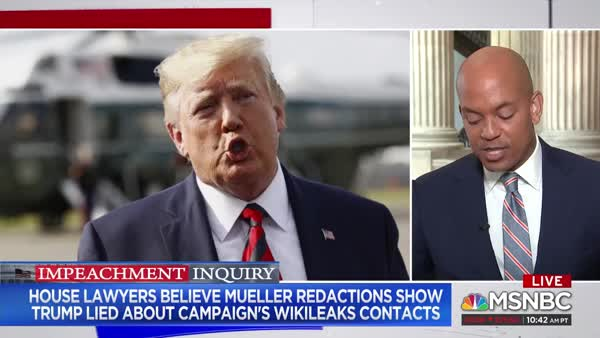 Judiciary Committee Thinks Trump Lied To Mueller About Wikileaks