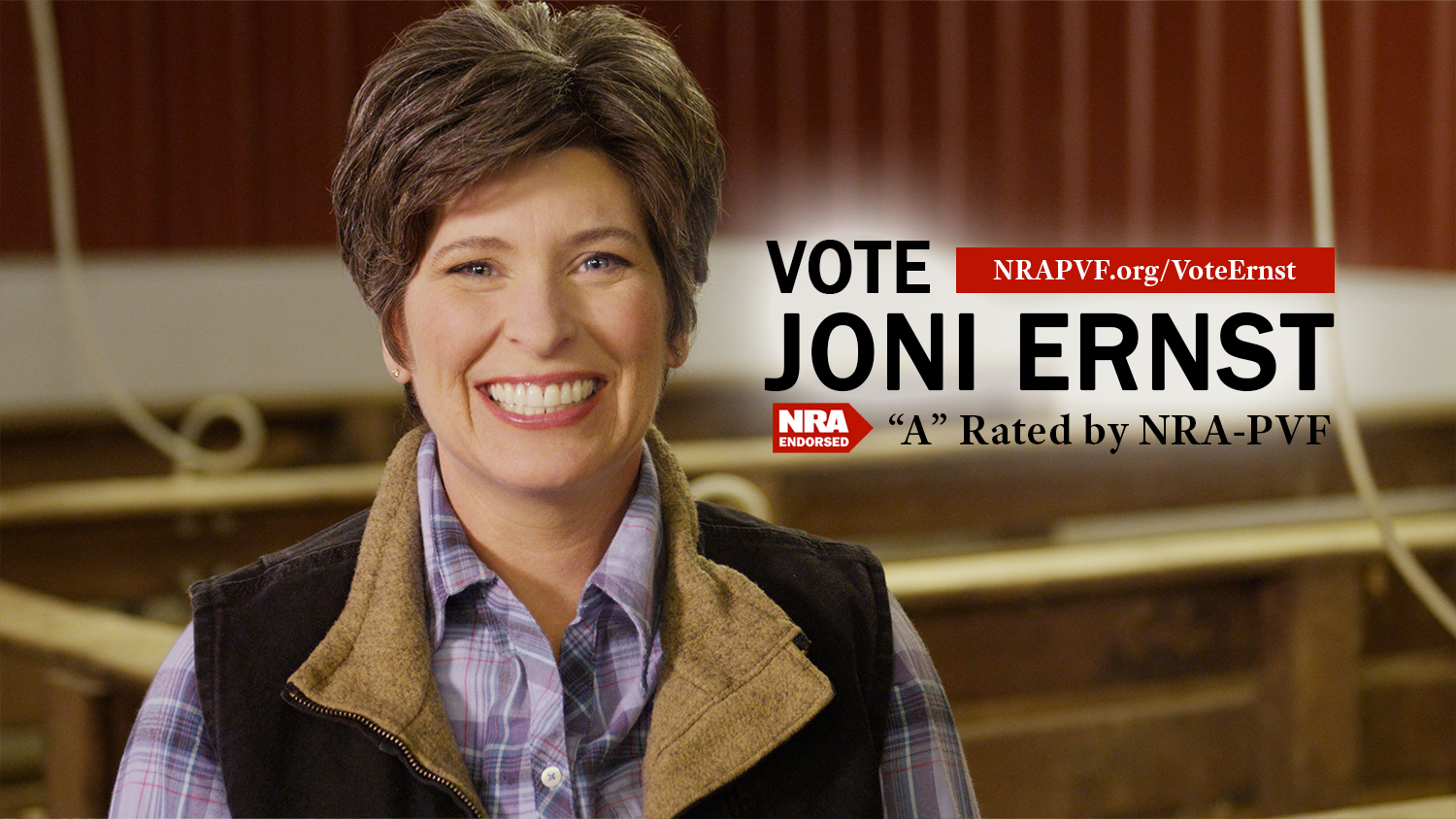 Joni Ernst Plays Cute With Her NRA Backing