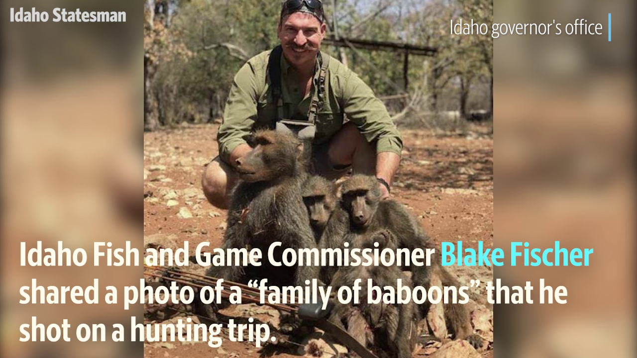 Idaho Fish & Game Commissioner Hunts 'Family Of Baboons' In Africa, Faces Calls To Resign