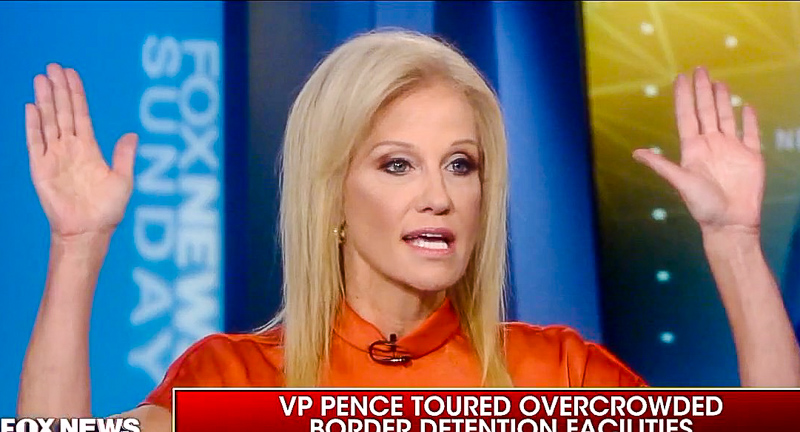 Chris Wallace Grills Kellyanne Conway Over Migrant Detention Centers: 'It's A Disaster'