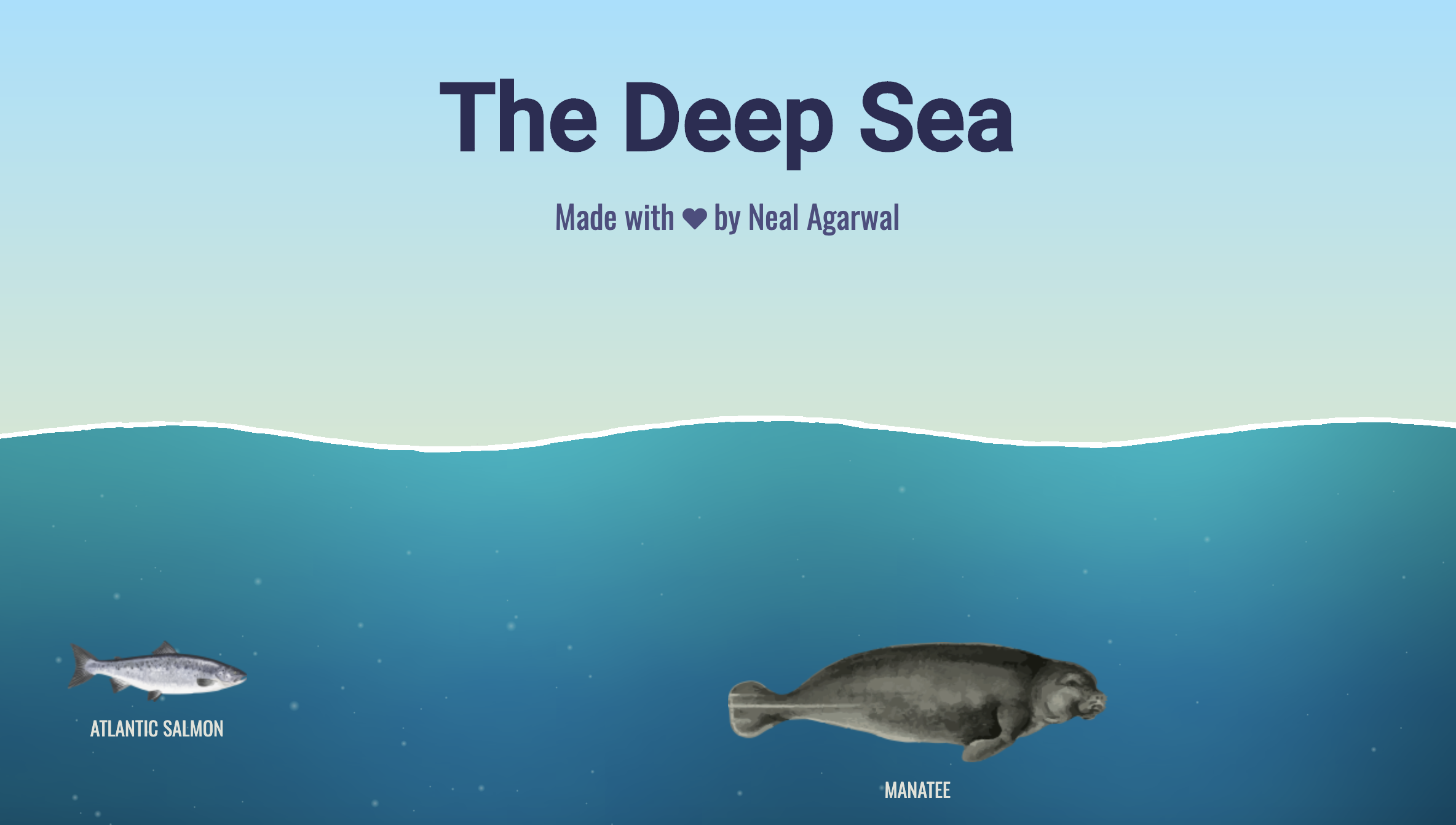 Image result for the deep sea neal agarwal