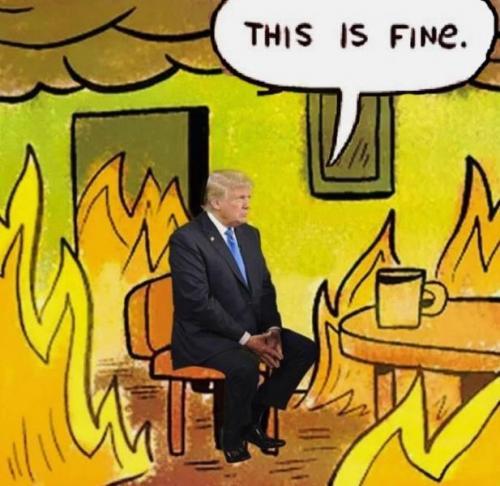 this_is_fine_trump.jpg