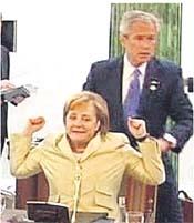 Bush-Groper.jpg