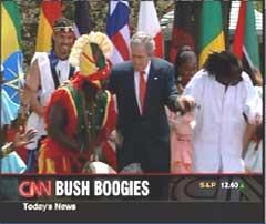bush-boogies.jpg
