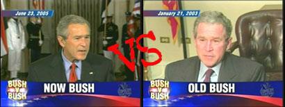 tds-bushbush.jpg