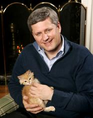 Stephen Harper and kitten