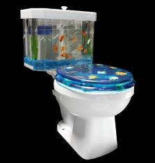 fish and flush
