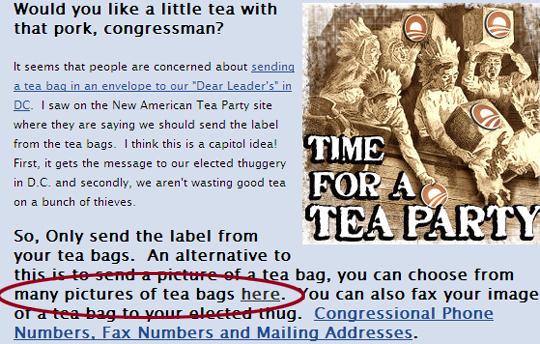 tea_bag_fail_catdog_here_e6674.jpg