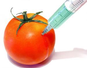 tomato_450cb_0.jpg