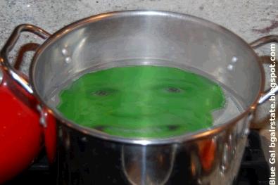 boiling the frog_9dd59.jpg