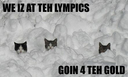 kitties in the snow from dependable renegade_c688c.jpg