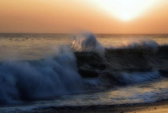 wave-cry-wind-cry_bfa66_0.jpg