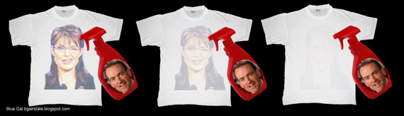 wide huckabee washes away the Palin_86f5a.jpg